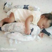 baby-sabai-cat